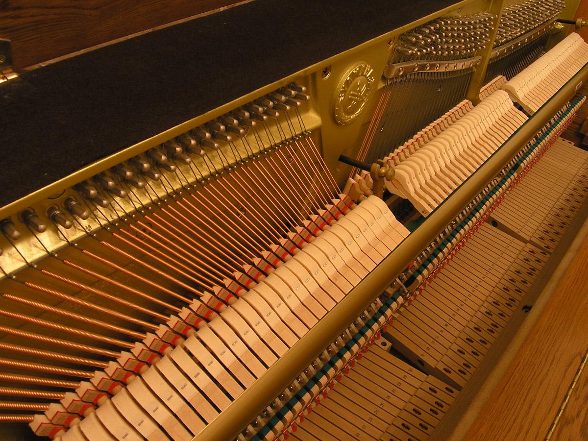 Touchweight Of Digital Piano Yamaha